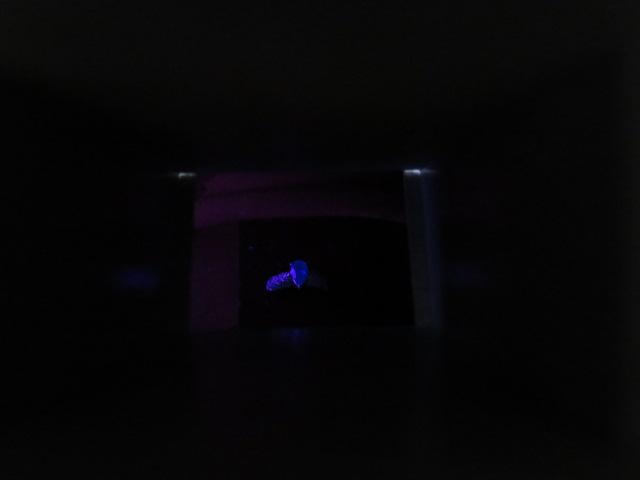 パライバトルマリン 短波紫外線 反応